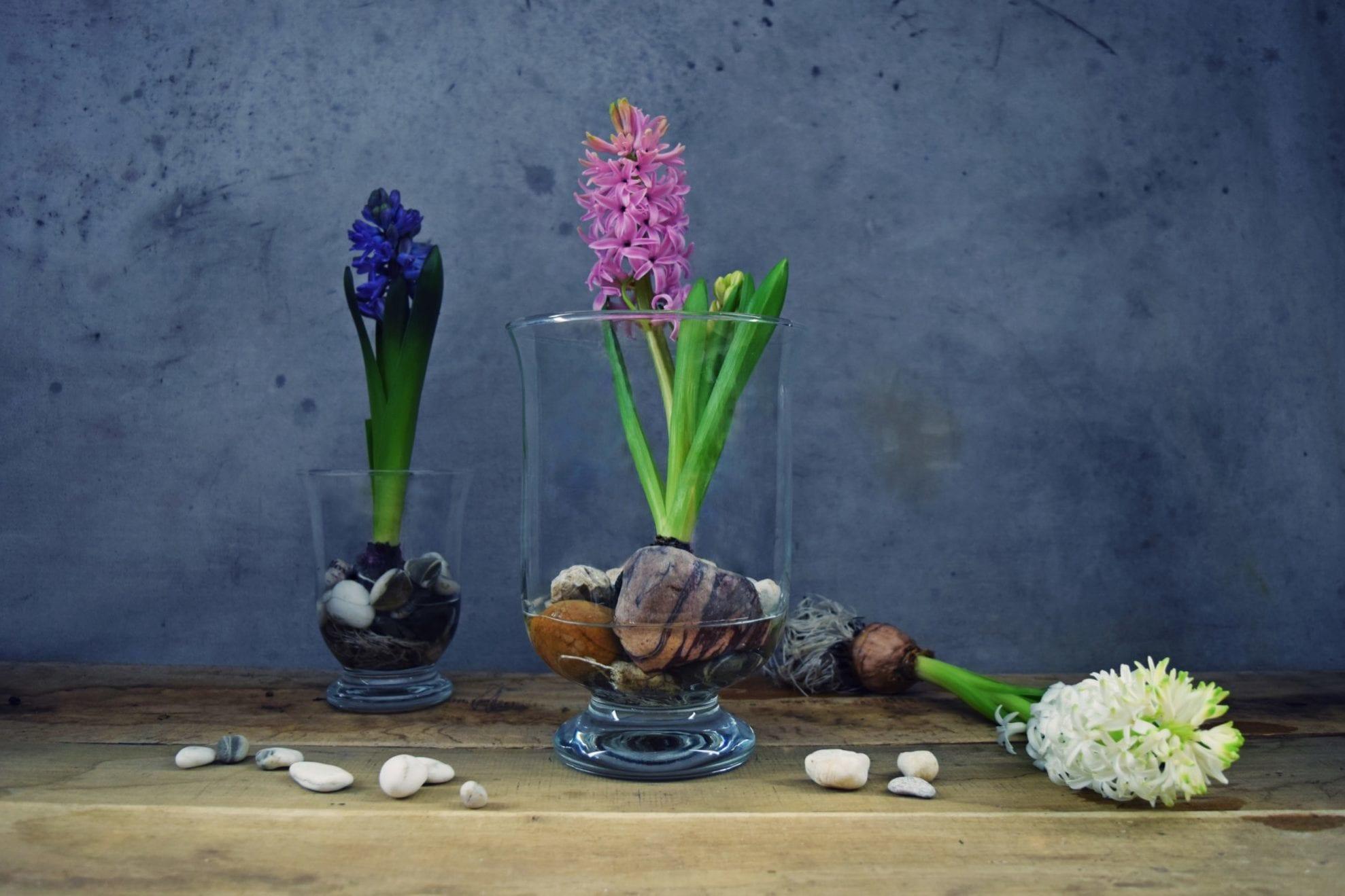 5 wazonów idealnych do salonu